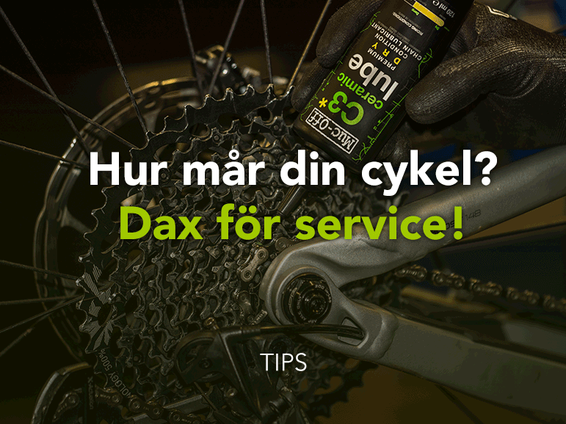 TIPS / CYKELSERVICE